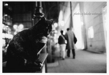 Tokyo005weblog